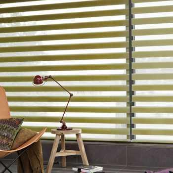 green vision blinds