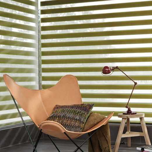 Day & Night Blinds in Sheffield